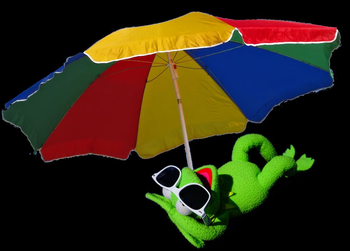 Kermit parasol 2